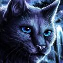 The New Chapter I Warrior Cats RP
